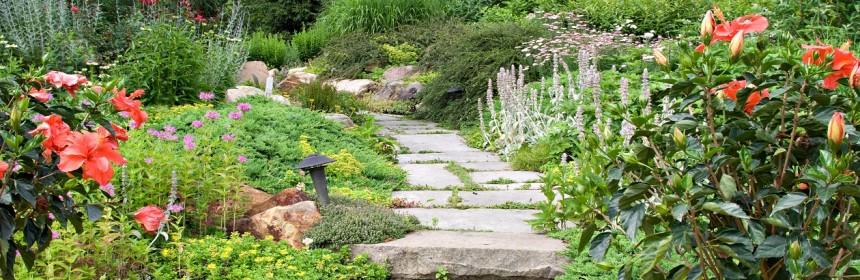 Comment D Corer Votre Jardin