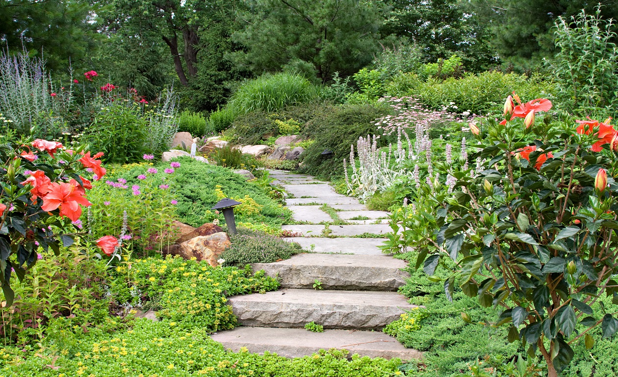 Comment d corer votre jardin Image jardin paysager